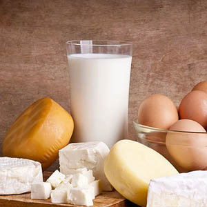 Eggs and Dairy Produce